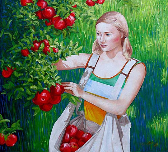 New Zealand painting of an Apple Picker