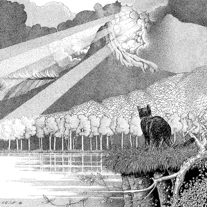 Landscape drawing with a black cat
