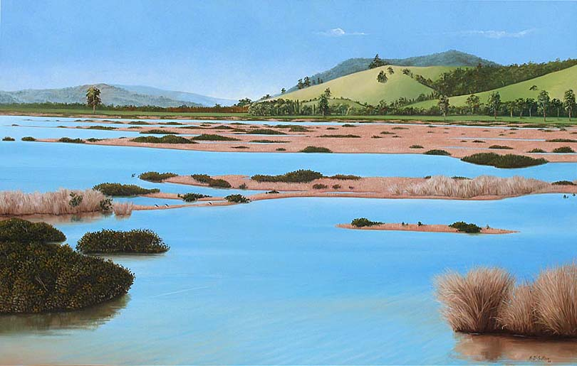 New Zealand landscape artwork