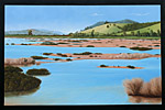New Zealand Landscape Painting